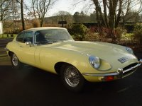 Voiture de collection : Jaguar E-type coupé